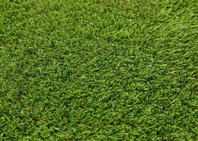 Kildare Grass
