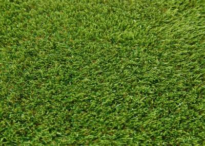 Galway 40mm Grass