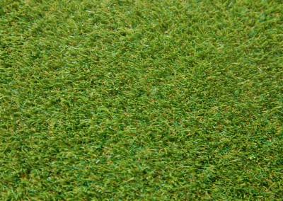 Kerry Grass