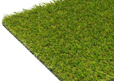 Kerry Budget Friendly 18mm Artificial Grass