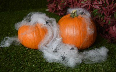 Spooktacular October Offer – 15% Off