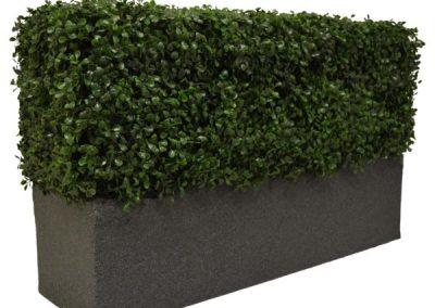 Boxwood Bespoke Planter