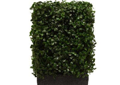Buxus Bespoke Hedge Planter End