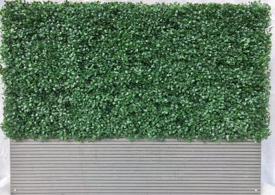 Buxus Composite Planter Side