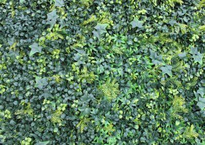Shuttergrass