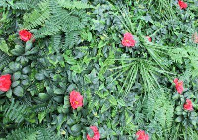 Shuttergrass with Hibisus